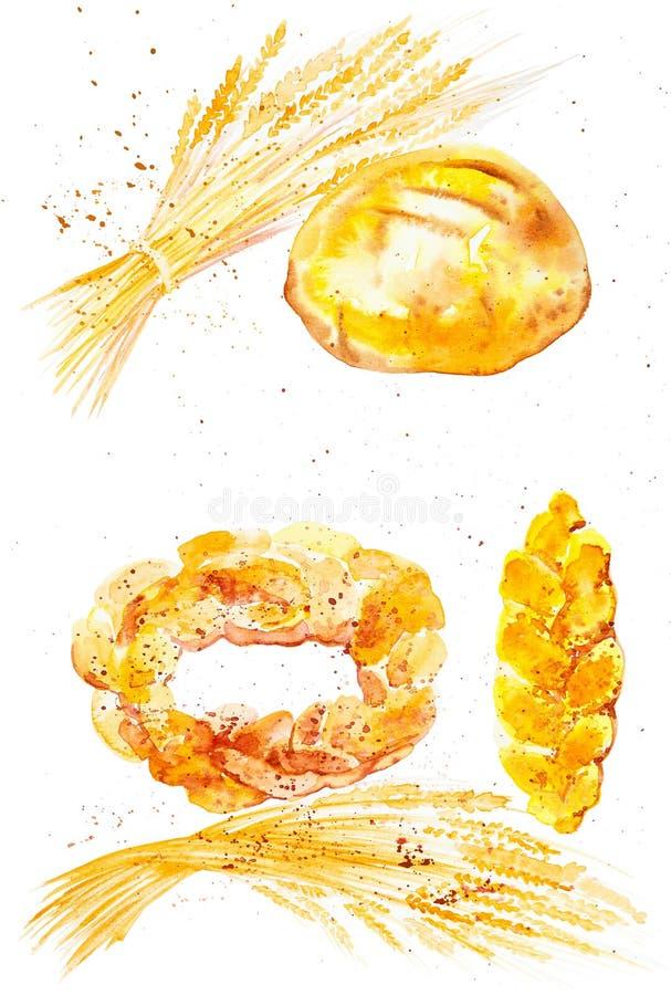 Illustrazione dell'acquerello delle orecchie del grano, dei panini differenti e del pane fra le gocce astratte dei grani Isolato  royalty illustrazione gratis