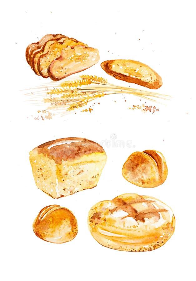 Illustrazione dell'acquerello delle orecchie del grano, dei panini differenti e del pane fra le gocce astratte dei grani Isolato  immagine stock