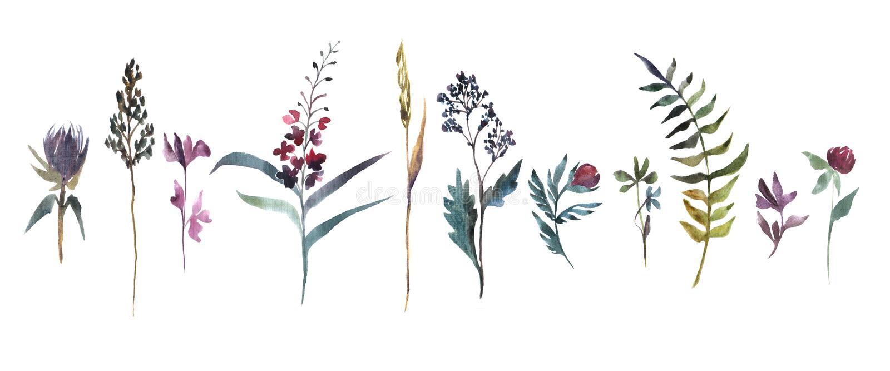Illustrazione dell'acquerello E r illustrazione di stock