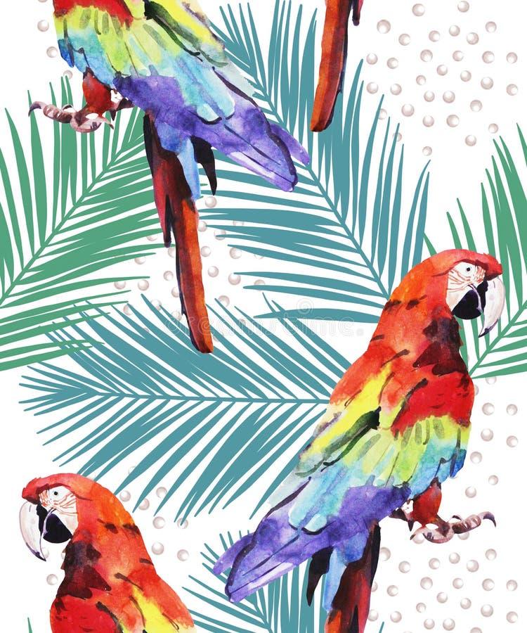 Illustrazione dell'acquerello, pappagallo, ara con il modello di foglia di palma, dipinto a mano isolato su fondo bianco illustrazione vettoriale