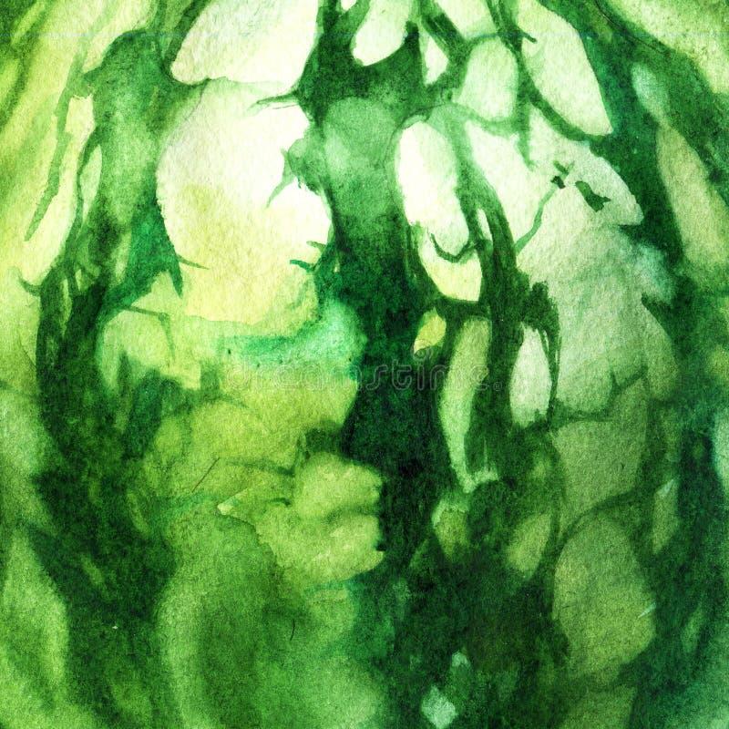 Illustrazione dell'acquerello, struttura Anguria dell'acquerello Estratto di Backgroud illustrazione di stock