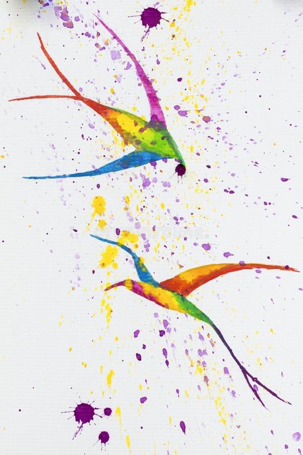 Illustrazione dell'acquerello uccelli fotografia stock libera da diritti