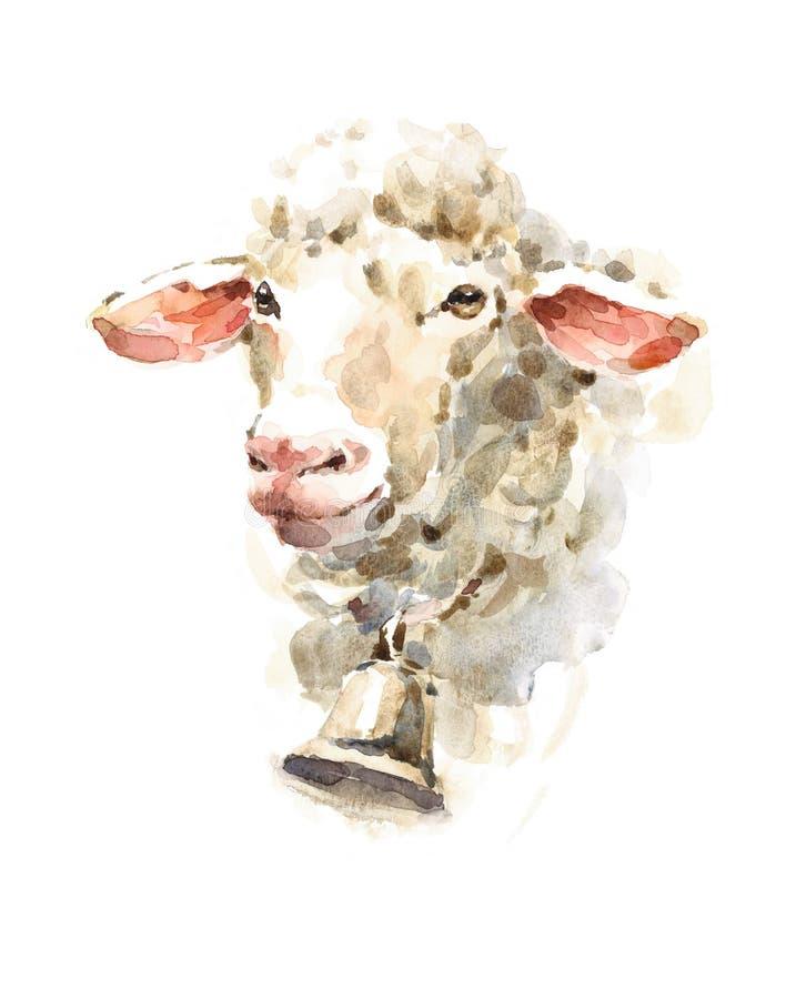 Illustrazione dell'animale da allevamento dell'acquerello delle pecore dipinta a mano illustrazione di stock