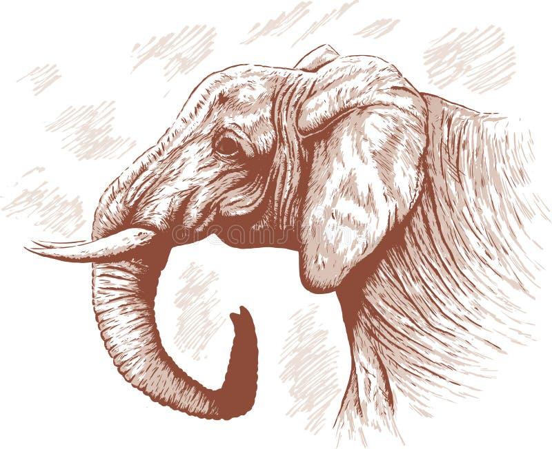 Illustrazione dell'elefante. illustrazione di stock