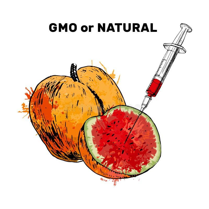 Illustrazione dell'iniezione di schizzo nell'albicocca Concetto per frutta e la siringa geneticamente modificate con il prodotto  illustrazione di stock