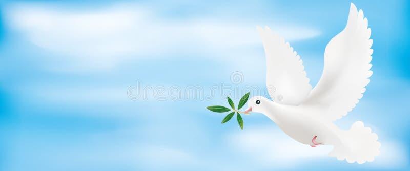 Illustrazione dell'insegna 3d di web con la colomba e ramo di ulivo con il fondo del cielo illustrazione vettoriale