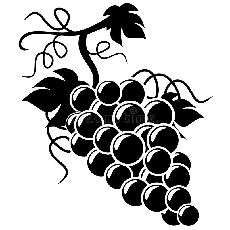 Illustrazione dell'uva della siluetta illustrazione vettoriale