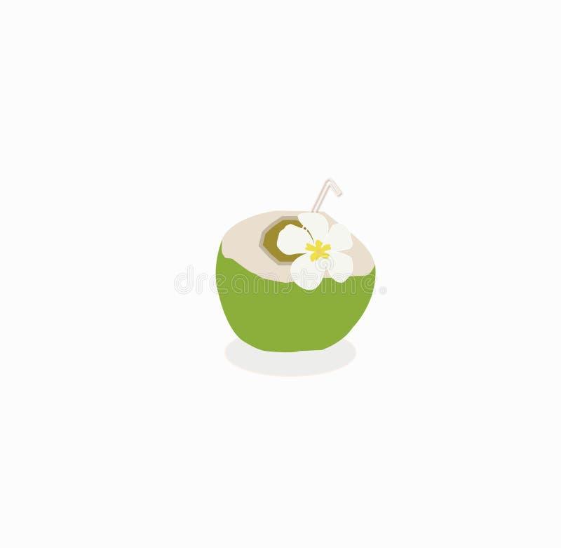 Illustrazione della bevanda isolata dell'acqua di cocco su bianco fotografie stock libere da diritti
