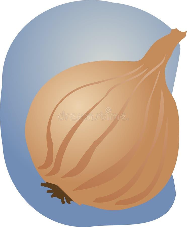 Download Illustrazione Della Cipolla Illustrazione Vettoriale - Illustrazione di mano, abbozzo: 7319792