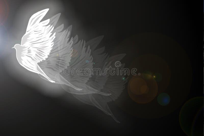 Illustrazione della colomba illustrazione vettoriale