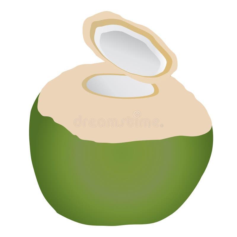 Illustrazione della noce di cocco Copra di produzione della noce di cocco, olio di cocco illustrazione di stock