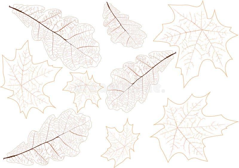Illustrazione della priorità bassa delle vene dei fogli royalty illustrazione gratis