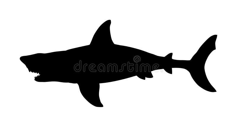 Illustrazione della siluetta di vettore dello squalo isolata su fondo bianco royalty illustrazione gratis
