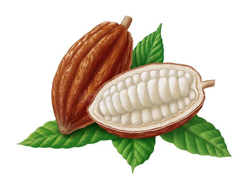 Illustrazione delle fave e delle foglie di cacao royalty illustrazione gratis