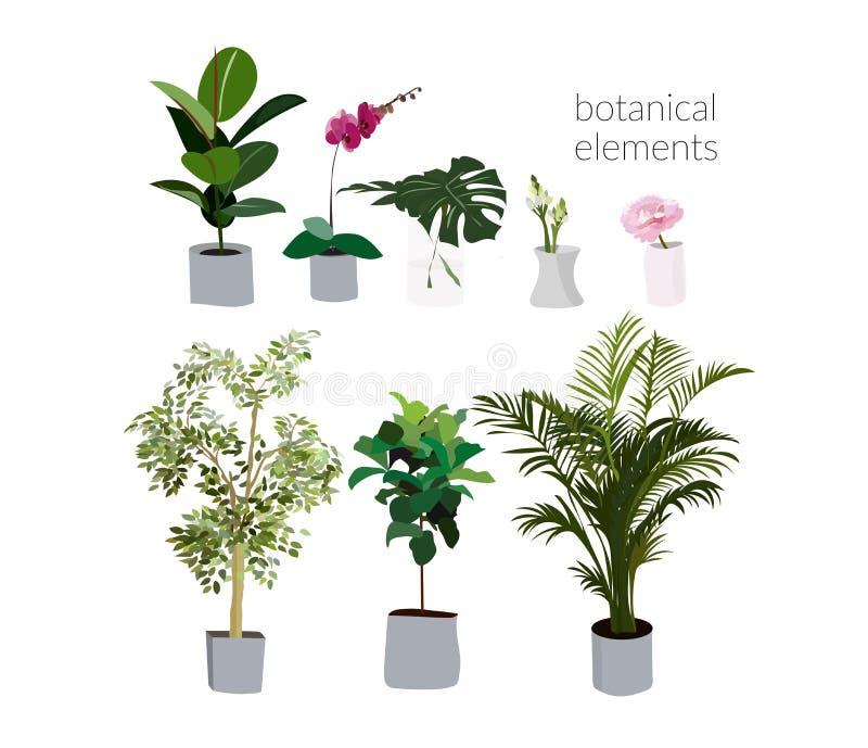 Illustrazione delle piante da vaso di vettore philodendron, palma, orchidea, fiore in vaso Elementi di interior design decorazion royalty illustrazione gratis