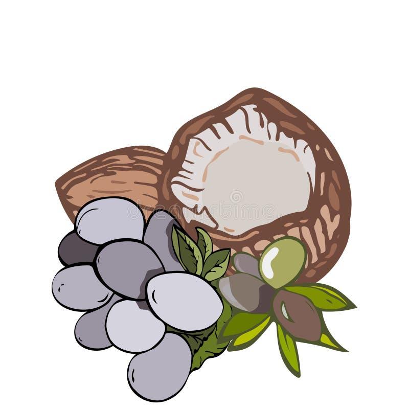 Illustrazione delle verdure saporite immagini stock