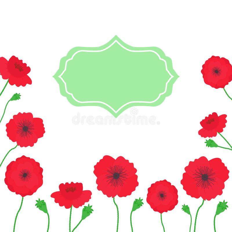Illustrazione di estate di vettore con i fiori dei papaveri con il posto per testo su fondo bianco illustrazione vettoriale