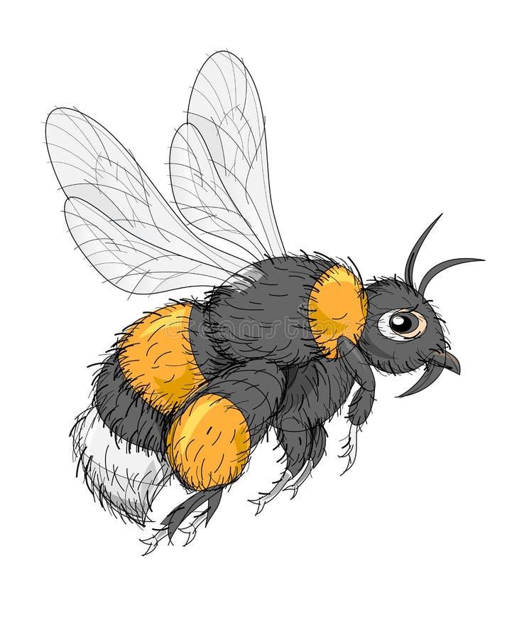 Illustrazione di fantasia del bombo sveglio dell'insetto su fondo bianco Immagine disegnata a mano di vettore illustrazione di stock