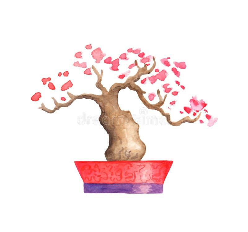 Illustrazione di fioritura rosa dell'acquerello dell'albero su fondo bianco Albero orientale con i fiori rosa royalty illustrazione gratis