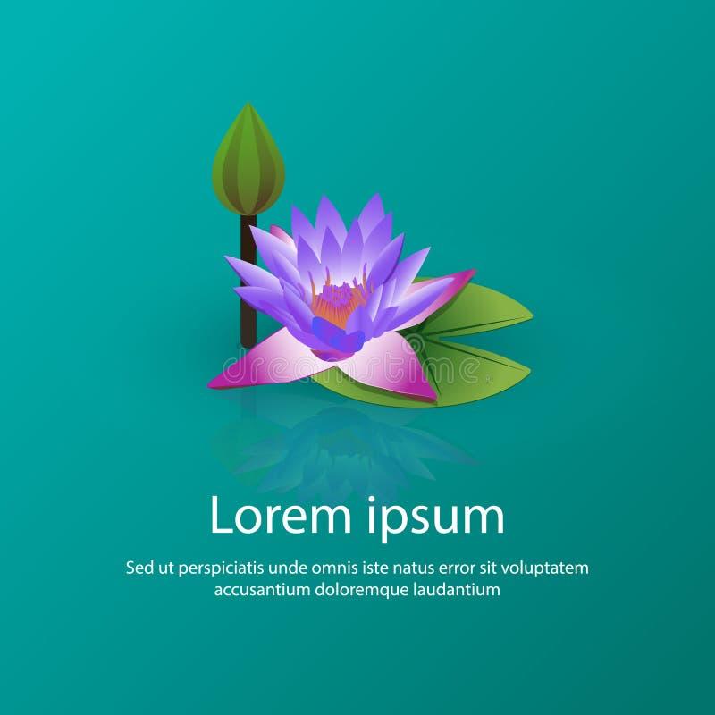 Illustrazione di fioritura di vettore del loto del giglio fotografia stock libera da diritti