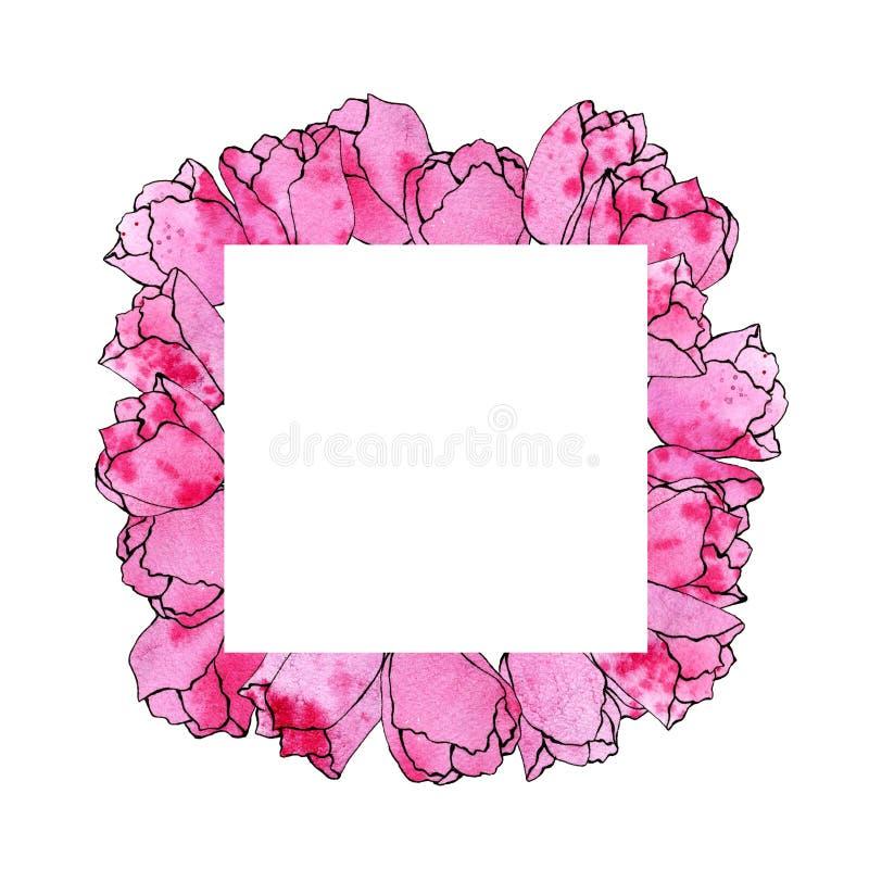 Illustrazione di schizzo dell'acquerello di un telaio quadrato dei tulipani rosa illustrazione di stock