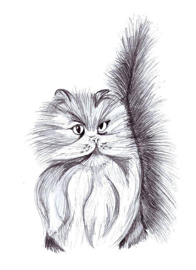 Illustrazione di un gatto persiano della matita illustrazione vettoriale