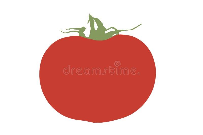 Illustrazione di un pomodoro su fondo bianco immagine stock
