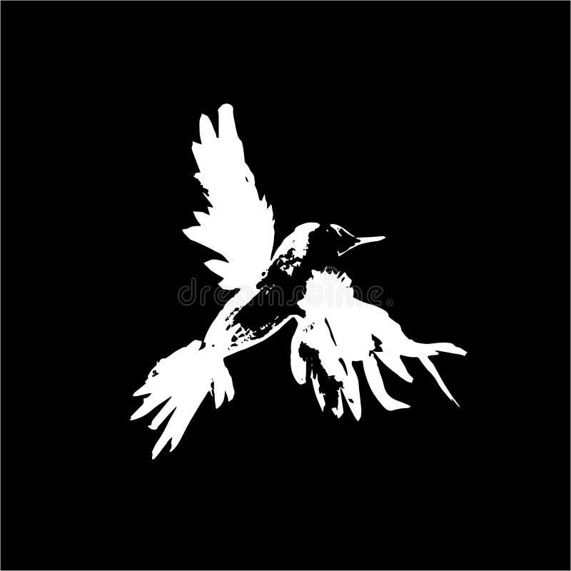 Illustrazione di un uccello di volata Gazza o corvo, fatto in inchiostro Gesso su una lavagna illustrazione vettoriale