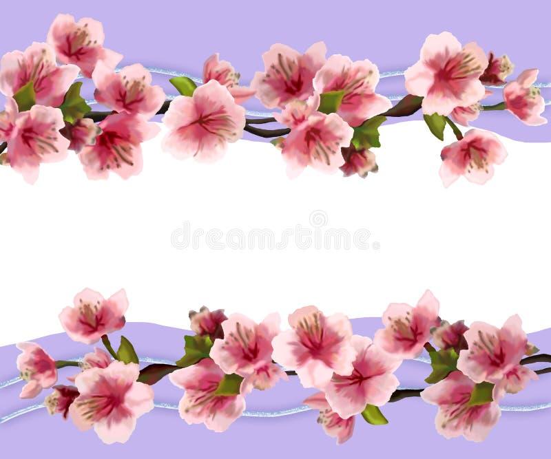 Illustrazione di una carta con i fiori della ciliegia royalty illustrazione gratis