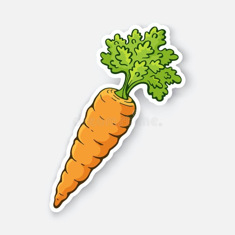 Illustrazione di vettore Carota con un gambo delle foglie verdi Alimento vegetariano sano Ingrediente per insalata illustrazione vettoriale