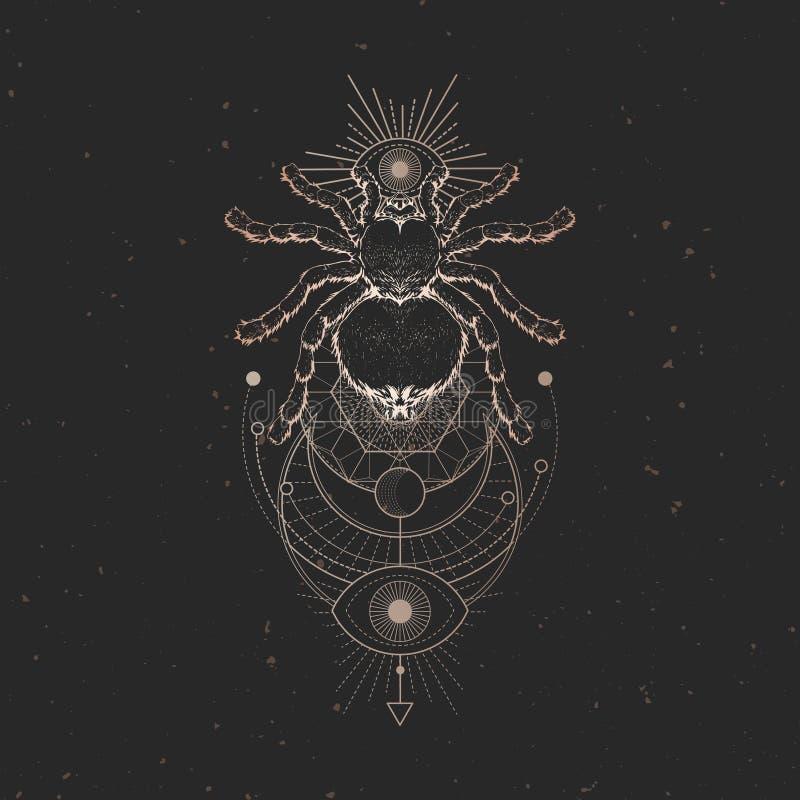Illustrazione di vettore con il ragno disegnato a mano e simbolo geometrico sacro su fondo d'annata nero Segno mistico astratto O illustrazione di stock