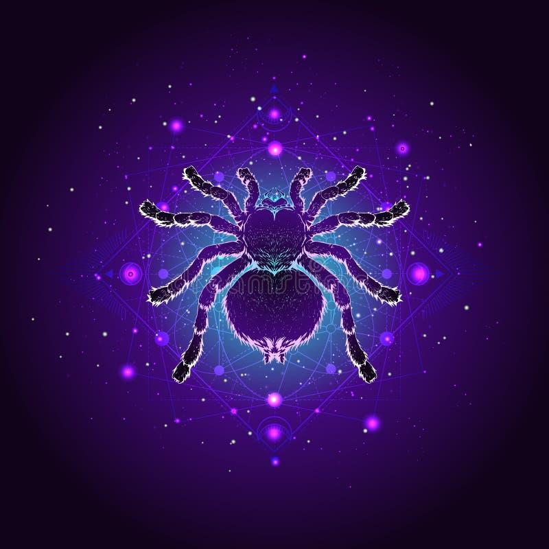 Illustrazione di vettore con la tarantola disegnata a mano del ragno e simbolo geometrico sacro contro il cielo stellato Segno mi royalty illustrazione gratis
