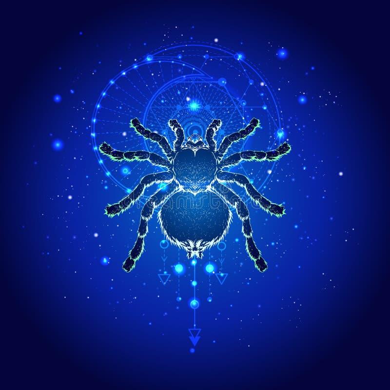 Illustrazione di vettore con la tarantola disegnata a mano del ragno e simbolo geometrico sacro contro il cielo stellato Segno mi illustrazione di stock