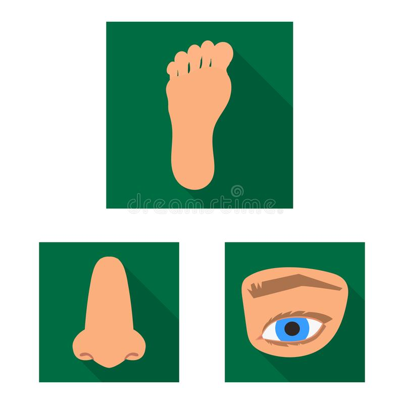 Illustrazione di vettore del logo della parte e del corpo Metta dell'icona di vettore dell'anatomia e del corpo per le azione illustrazione vettoriale