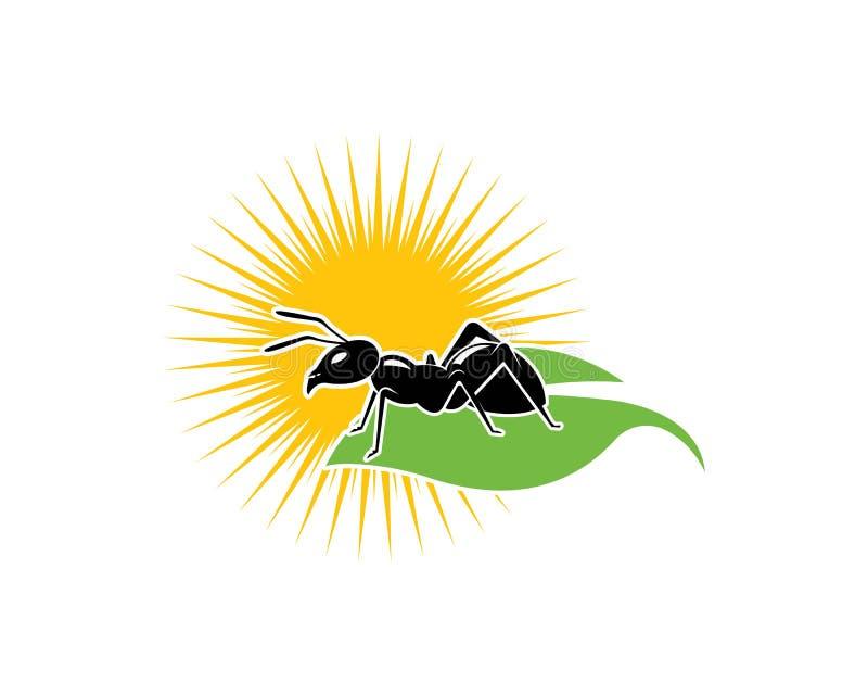 Illustrazione di vettore del modello di Ant Logo illustrazione di stock