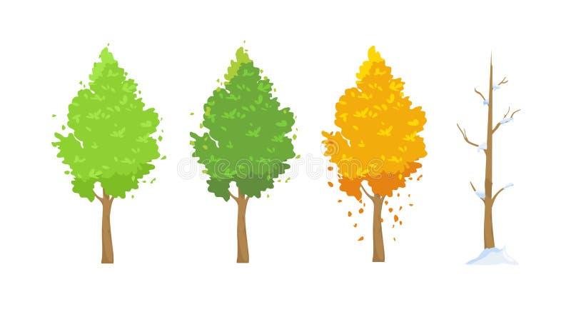 Illustrazione di vettore dell'albero nelle stagioni differenti Inverdisca in primavera e l'estate, rosse in autunno, albero dell' royalty illustrazione gratis