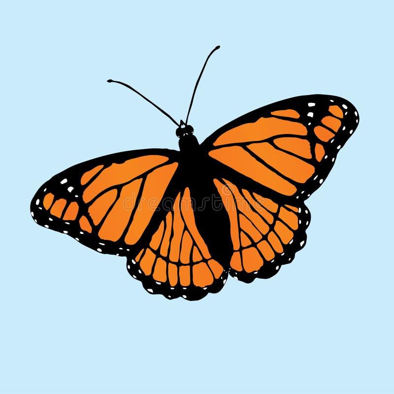 Illustrazione di vettore della farfalla del viceré immagine stock