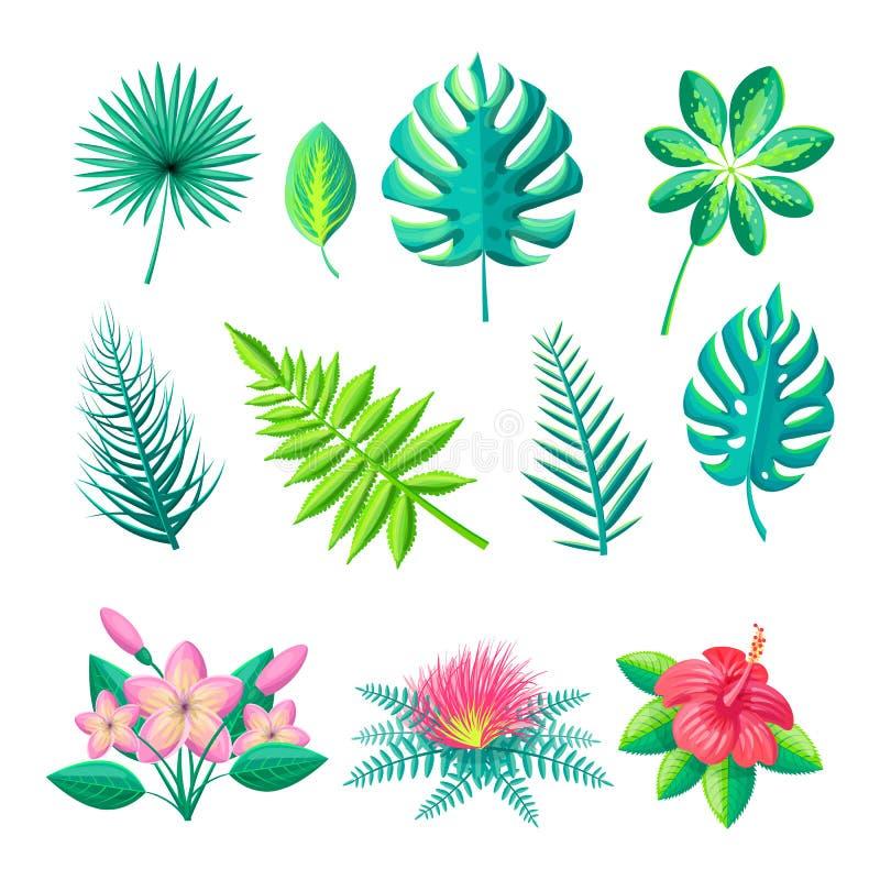 Illustrazione di vettore della raccolta dei fiori e delle foglie royalty illustrazione gratis