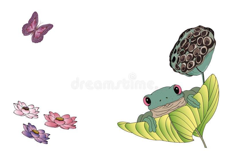 Illustrazione di vettore della rana di albero verde sulla foglia, fiori di loto di fioritura, farfalla volante illustrazione di stock