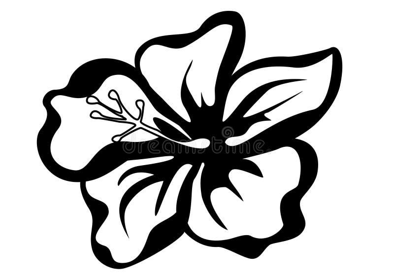 Illustrazione di vettore della siluetta del fiore dell'ibisco illustrazione di stock