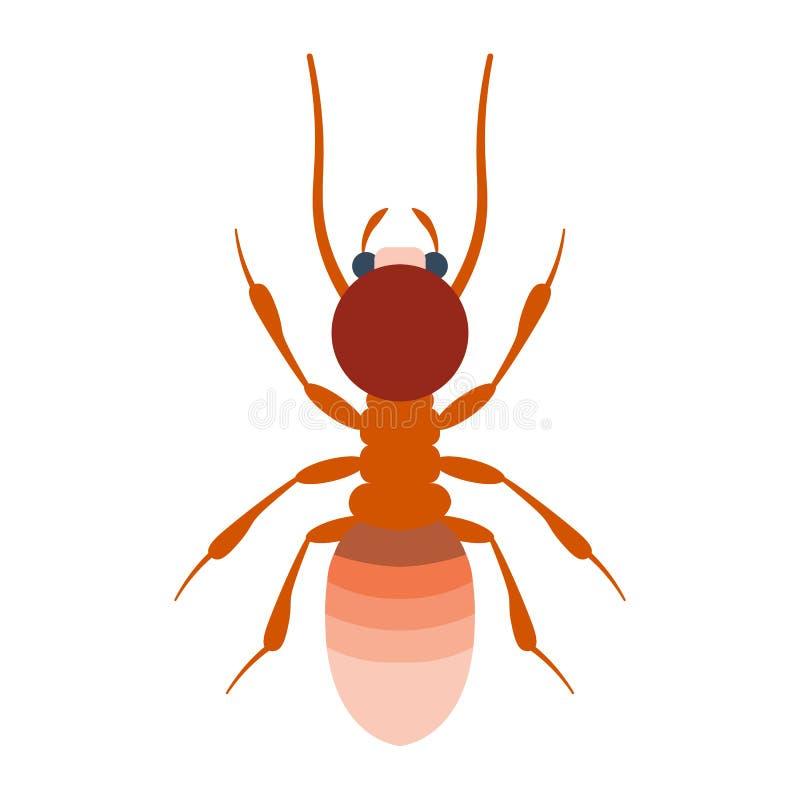 Illustrazione di vettore della termite Termite su fondo bianco Illustrazione piana della termite Vettore isolato termite illustrazione di stock