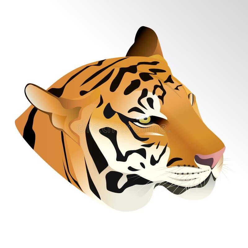 Illustrazione di vettore della testa della tigre immagini stock libere da diritti