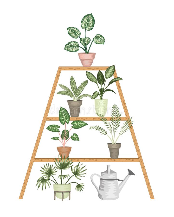 Illustrazione di vettore delle piante da appartamento tropicali in vasi su un supporto isolato su fondo bianco illustrazione vettoriale