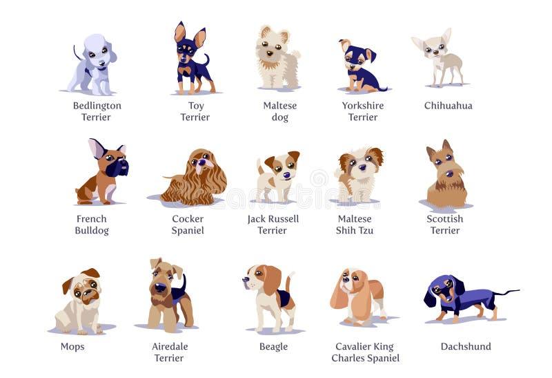 Illustrazione di vettore delle razze differenti dei cuccioli dei cani royalty illustrazione gratis