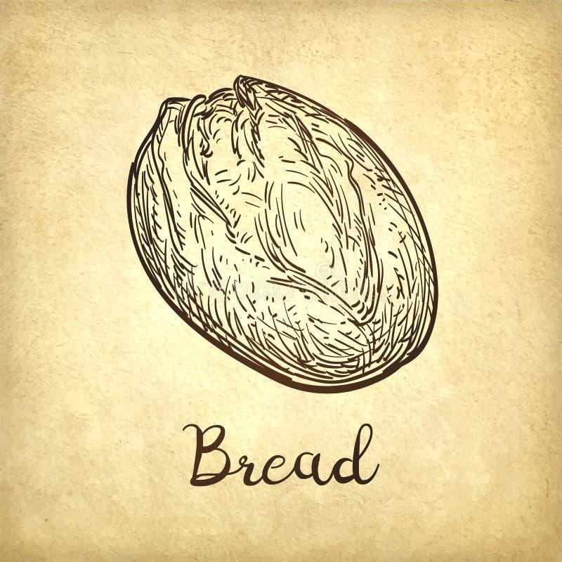 Illustrazione di vettore di pane rustico royalty illustrazione gratis