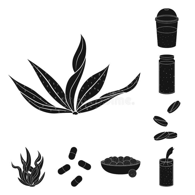 Illustrazione di vettore di erba e del simbolo naturale Raccolta dell'illustrazione di riserva di vettore dell'alga e dell'erba illustrazione vettoriale