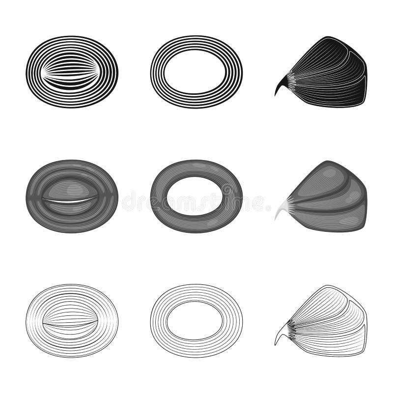 Illustrazione di vettore di fibra e dell'icona muscolare Metta dell'icona di vettore del corpo e della fibra per le azione royalty illustrazione gratis