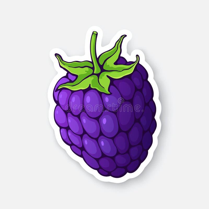 Illustrazione di vettore Frutta di Blackberry con il gambo Dieta sana ed alimento del vegetariano Autoadesivo con il contorno illustrazione di stock
