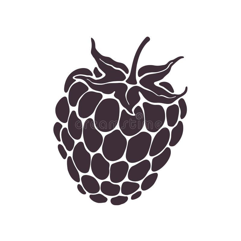 Illustrazione di vettore Siluetta della frutta del lampone o della mora con il gambo Dieta sana ed alimento del vegetariano illustrazione di stock