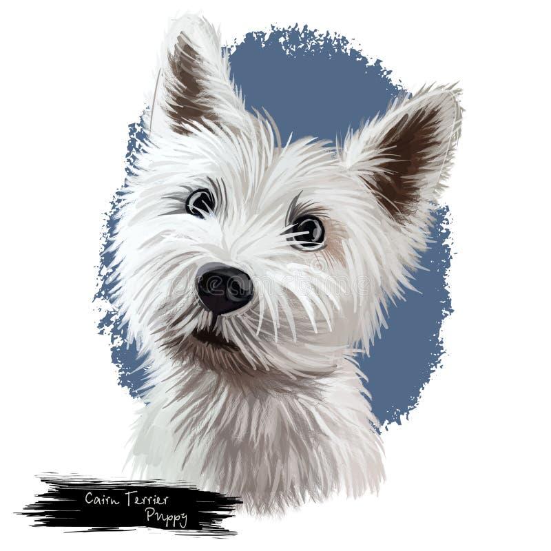 Illustrazione digitale di arte del ritratto del cucciolo del terrier di cairn illustrazione vettoriale